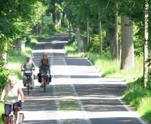 """Freie Fahrt für freie Bürger  -  mit Bus/Bahn, Auto, Fahrrad -  """"Ja"""" zum Radschnellweg"""